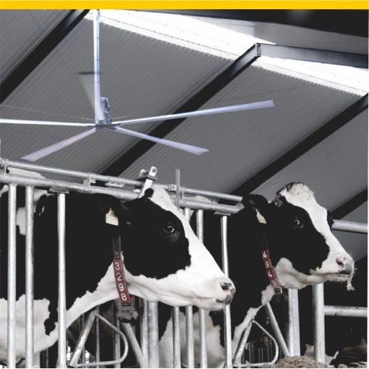 Brise Ventilator für die Stallbelüftung
